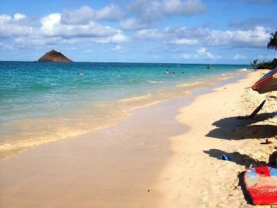 5月限定! ハワイで精米したお米プレゼント キャンペーン!