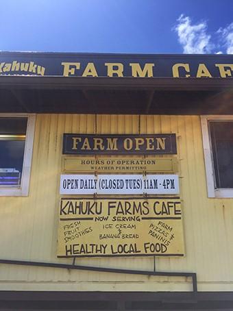 ハワイの野菜を満喫。農園ツアーとプレートランチで自然を学ぼう!