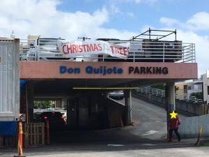 ドン・キホーテでクリスマスツリーの生木の販売が始まりました