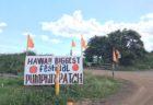 ハロウィーンの様子を投稿してハワイ7泊無料宿泊を当てよう!