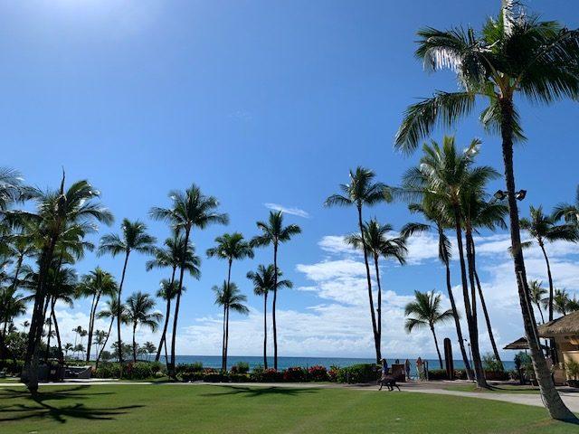 【参加者募集】5/2(木)ハワイ不動産セミナー開催のご案内
