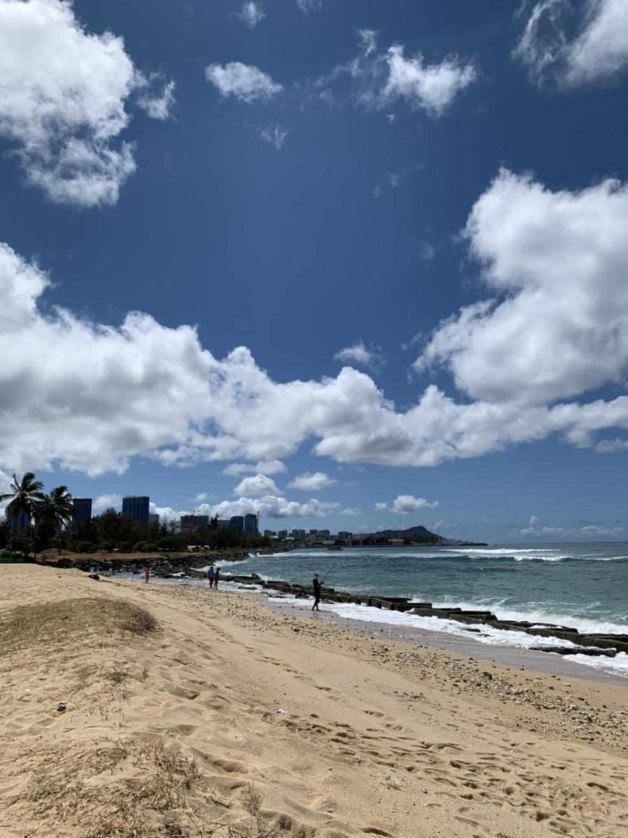 コロナ ハワイ 島
