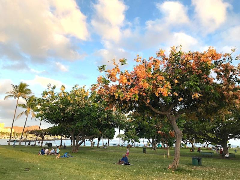アラモアナビーチパークでバーベキュー