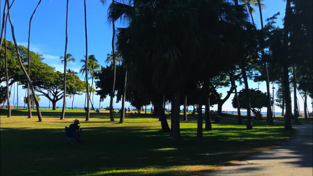 ワイキキでバーベキューができるフォートデルッシービーチパーク